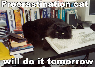 'Procrastination cat will do it tomorrow' from Lolcat Research