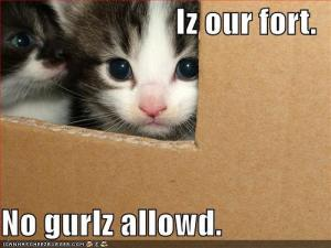 """Iz our fort. No gurlz allowed."" How not to run a group. Image source: Write Meg blog"