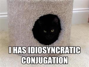 """I has idiosyncratic conjugation."" Image source: Stan Carey's blog"