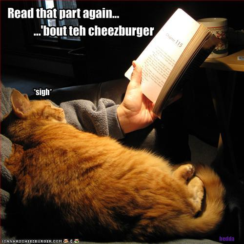 Lolcat binge reading - read that part again, the part about the cheezburger. Image source: Adventures in Twilighting