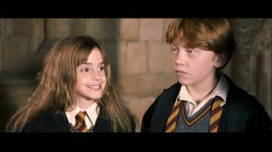 Ron and Hermione in The Philosopher's Stone. Image source: FanPop