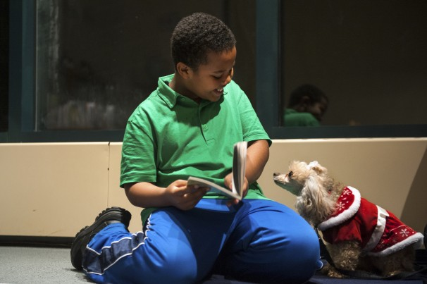 "Binyam Gebremeskel, 9, reading aloud to Lucy, a toy poodle. Lucy seems very happy to hear about ""Ricky Ricotta's Mighty Robot"" at the Charles E. Beatley Jr. Central Library. (The Alexandria library offers the Paws to Read program.) Source: Katherine Frey/The Washington Post"